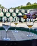Вино золота руки женщины лить от бутылки в стекла стоковое изображение rf