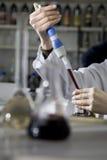вино испытания лаборатории Стоковое Изображение RF