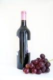 Вино и виноградина Стоковые Фотографии RF