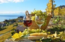 Вино и виноградины Стоковое Фото