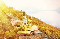 Вино и виноградины Стоковые Изображения
