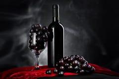 Вино и виноградины Стоковая Фотография