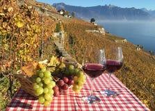 Вино и виноградины Стоковые Изображения RF