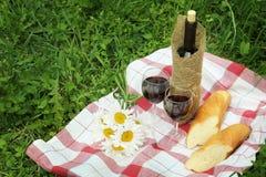 Вино и еда в природе Стоковые Фото