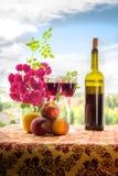 Вино и плодоовощи стоковая фотография rf