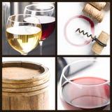 вино коллажа Стоковые Фотографии RF