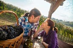 Вино красивых пар выпивая Стоковое Изображение RF