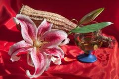вино лилии Стоковое Изображение RF