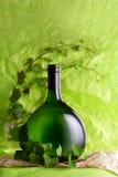 вино листьев бутылочного зеленого Стоковые Фото