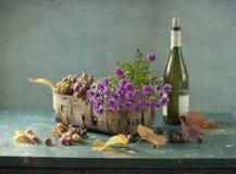 вино лозы бутылки Стоковые Фото