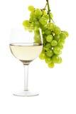 вино лозы Стоковые Фото