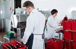 Вино мужского работника разливая по бутылкам с машиной на фабрике игристого вина Стоковые Изображения
