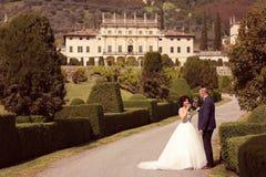 Вино невесты и groom выпивая Стоковая Фотография