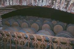 Вино несется старый погреб на винодельне Деревянные бочонки вина в винограднике стоковое фото