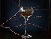 вино обеда пляжа стеклянное Стоковое Фото
