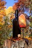 Вино осени Стоковые Фото