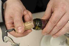 вино отверстия бутылки корзины Стоковая Фотография RF
