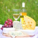 вино плиты лакомки сыра Стоковое Изображение RF