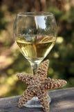 вино пляжа Стоковое Изображение RF