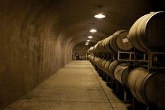 вино погреба Стоковое Фото