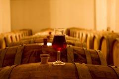вино погреба Стоковые Фото