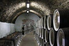 вино погреба Стоковые Фотографии RF