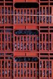Вино полей виноградин итальянское Стоковые Изображения RF