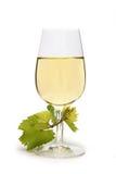 вино предпосылки изолированное стеклом белое Стоковые Изображения RF