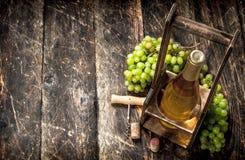 вино предпосылки стеклянное красное Белое вино на стойке с ветвями свежих виноградин Стоковые Изображения RF