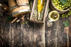 вино предпосылки стеклянное красное Белое вино с ведром зеленых виноградин Стоковая Фотография RF