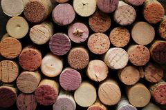 вино пробочки Стоковая Фотография RF