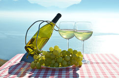Вино против озера Женев Стоковое Изображение RF