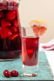 Вино плодоовощ лета, коктеиль sangria в малом стекле и jugful Стоковая Фотография RF