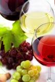 вино разнообразия Стоковая Фотография