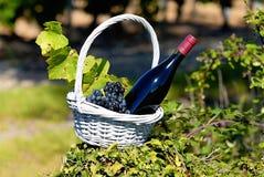 вино сельской местности бутылки красное Стоковые Изображения RF