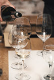 Вино сомелье лить в стекло на дегустации вин Стоковое Изображение