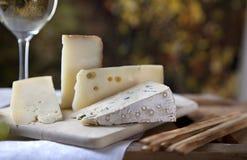 вино сыра Стоковое Фото