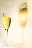вино тени Стоковая Фотография RF