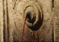 вино фонтана Стоковая Фотография