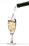 вино шампанского Стоковая Фотография RF