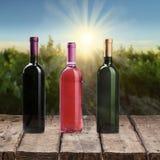 вино шкафа бутылки старое Стоковые Изображения