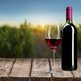 вино шкафа бутылки старое Стоковое Изображение RF