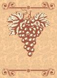 вино ярлыка бесплатная иллюстрация