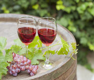 вино Стоковое Изображение RF