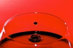 вино barolo Стоковые Изображения RF