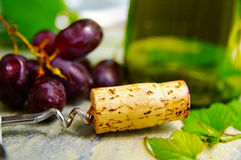 вино etc стоковая фотография rf