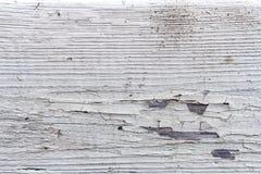 Винтажная бежевая деревянная текстура предпосылки с узлами Стоковые Изображения RF