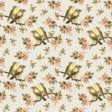 Винтажная безшовная предпосылка с ретро птицами в саде Стоковая Фотография RF