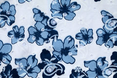 Винтажная белая и голубая хлопко-бумажная ткань Стоковое фото RF