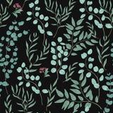 Винтажная ботаническая безшовная картина с шикарным евкалиптом разветвляет, листья и цветки на черной предпосылке реалистическо иллюстрация вектора